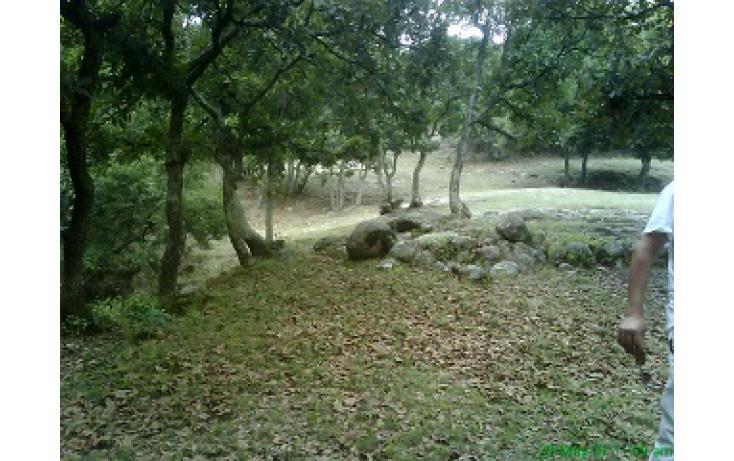 Foto de terreno habitacional con id 335596 en venta en las moras anáhuac no 04