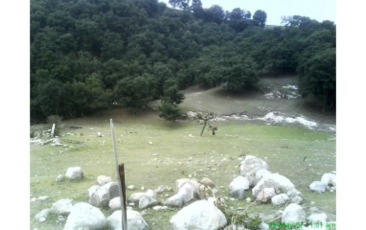 Foto de terreno habitacional con id 335596 en venta en las moras anáhuac no 05