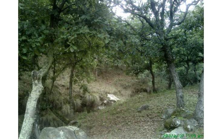 Foto de terreno habitacional con id 335596 en venta en las moras anáhuac no 06