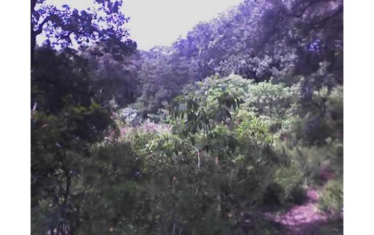Foto de terreno habitacional con id 236789 en venta en nacional santa maría ahuacatitlán no 04