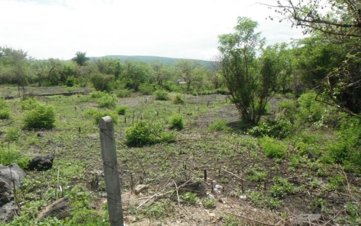 Foto de terreno habitacional con id 310393 en venta en privada de cantera tetecalita no 01