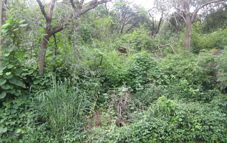 Foto de terreno habitacional con id 317275 en venta en privada de mazamitla 28 las cañadas no 08