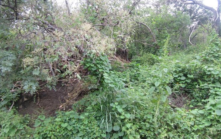 Foto de terreno habitacional con id 317275 en venta en privada de mazamitla 28 las cañadas no 09