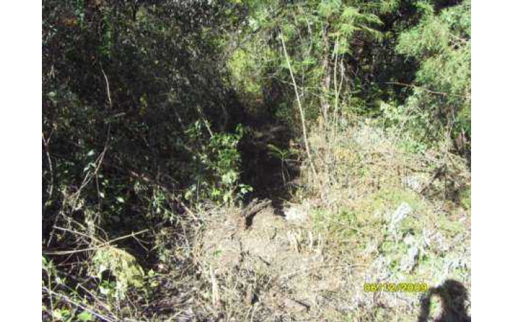 Foto de terreno habitacional con id 86655 en venta en rancho san diego san diego alcalá no 07