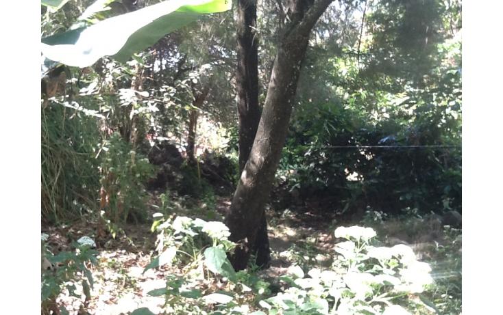 Foto de terreno habitacional con id 236702 en venta en rincón del copal santa maría ahuacatitlán no 01