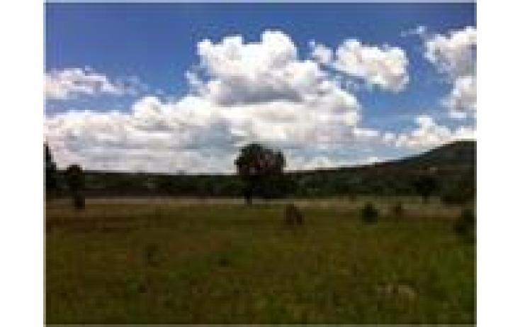 Foto de terreno habitacional con id 427672 en venta en san luis apizaquito 1 san luis apizaquito no 03