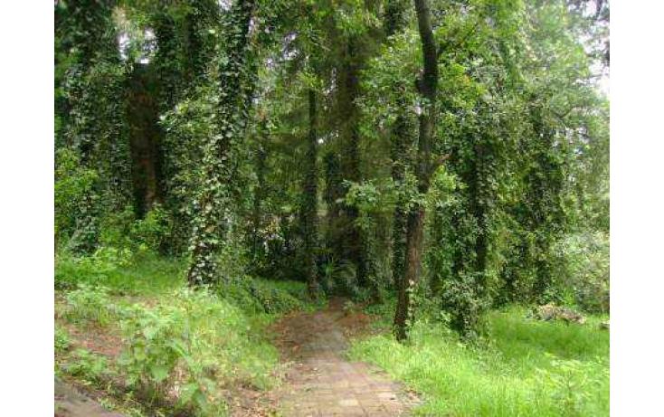 Foto de terreno habitacional con id 86763 en venta en tlamilololpan san mateo tlaltenango no 02