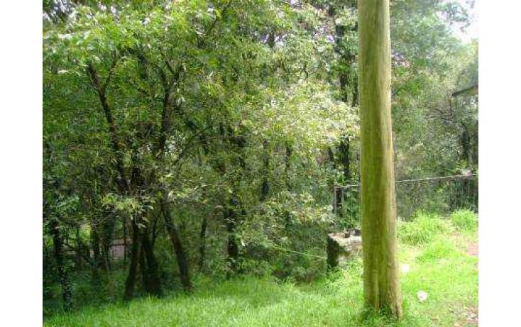 Foto de terreno habitacional con id 86763 en venta en tlamilololpan san mateo tlaltenango no 03