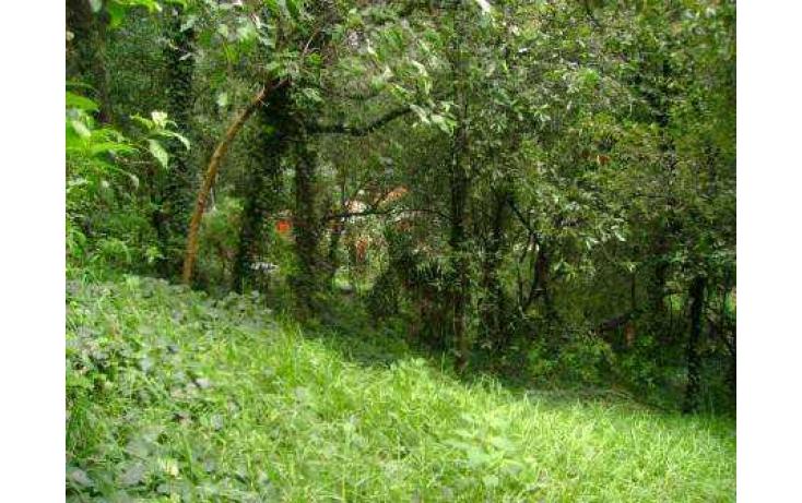 Foto de terreno habitacional con id 86763 en venta en tlamilololpan san mateo tlaltenango no 04