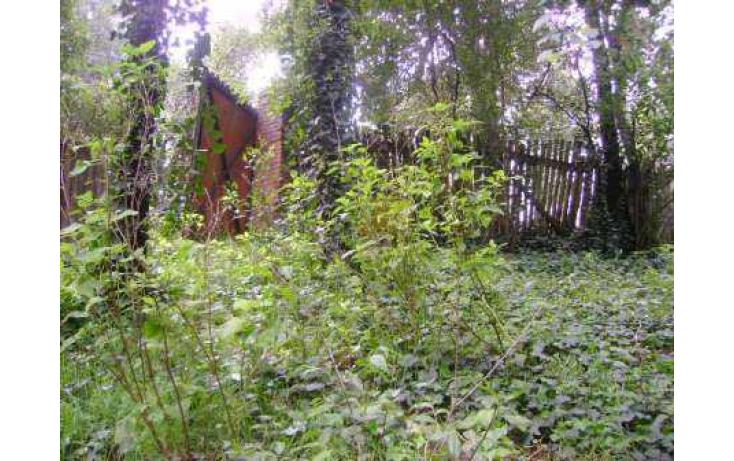 Foto de terreno habitacional con id 86763 en venta en tlamilololpan san mateo tlaltenango no 05