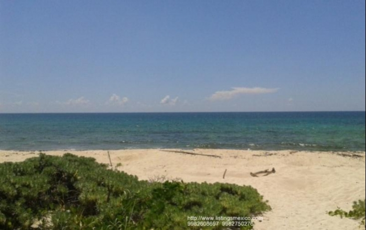 Foto de terreno habitacional con id 480728 en venta en zona federal maritima terrestre 2 puerto morelos no 02