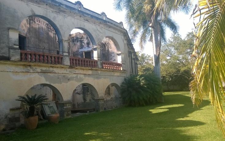 Foto de rancho en venta en  , tetecala, tetecala, morelos, 893525 No. 03