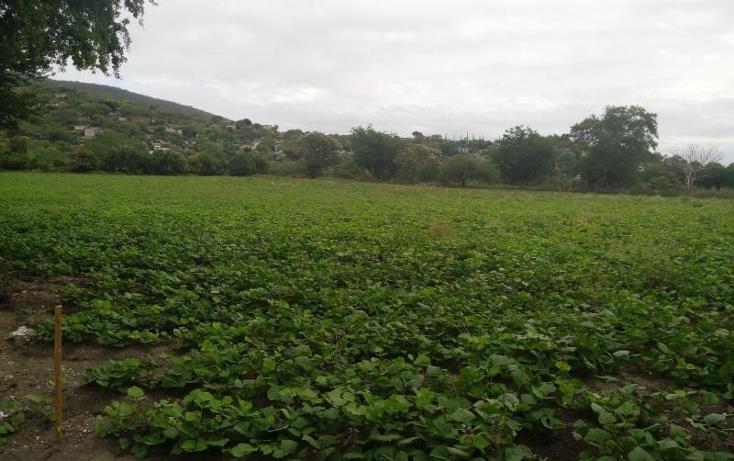 Foto de terreno industrial en venta en independencia carretera tepetzingo- tetecalita , tetecalita, emiliano zapata, morelos, 1450399 No. 01