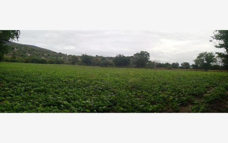 Foto de terreno industrial en venta en independencia carretera tepetzingo- tetecalita , tetecalita, emiliano zapata, morelos, 1450399 No. 02