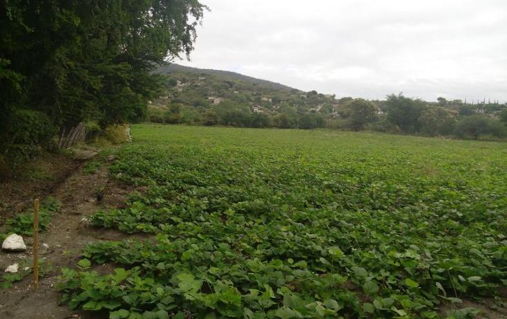 Foto de terreno industrial en venta en independencia carretera tepetzingo- tetecalita , tetecalita, emiliano zapata, morelos, 1450399 No. 03