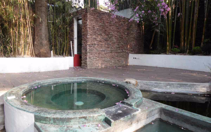Foto de departamento en renta en  , tetela del monte, cuernavaca, morelos, 1109121 No. 06