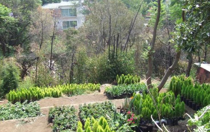 Foto de terreno habitacional en venta en  , tetela del monte, cuernavaca, morelos, 1192067 No. 05