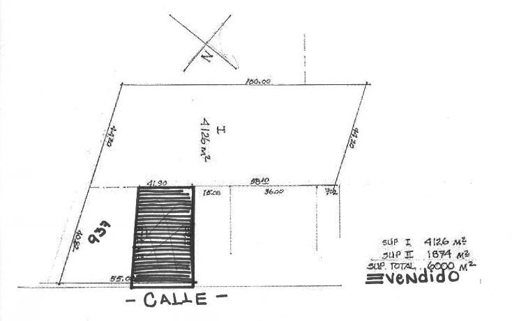 Foto de terreno habitacional en venta en  , tetela del monte, cuernavaca, morelos, 1200229 No. 02