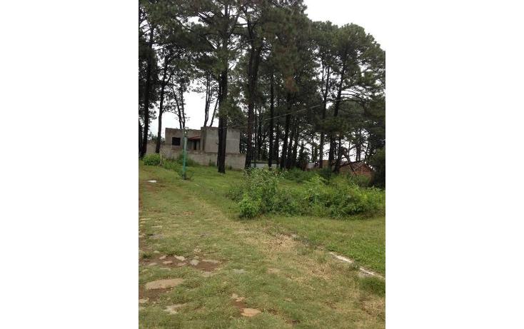 Foto de terreno habitacional en venta en  , tetela del monte, cuernavaca, morelos, 1251579 No. 02