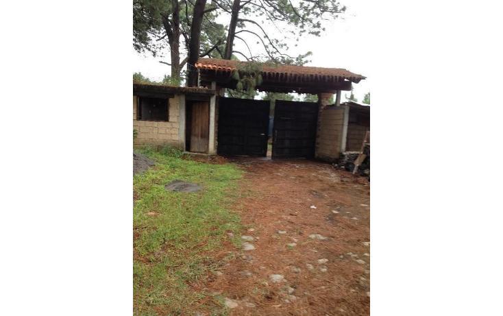Foto de terreno habitacional en venta en  , tetela del monte, cuernavaca, morelos, 1251579 No. 04