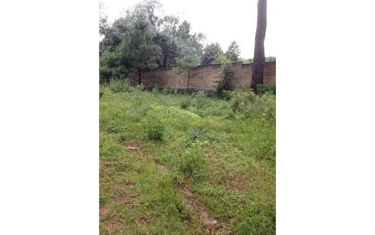 Foto de terreno habitacional en venta en  , tetela del monte, cuernavaca, morelos, 1251579 No. 08