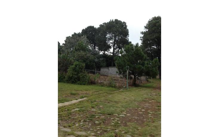 Foto de terreno habitacional en venta en  , tetela del monte, cuernavaca, morelos, 1251579 No. 09