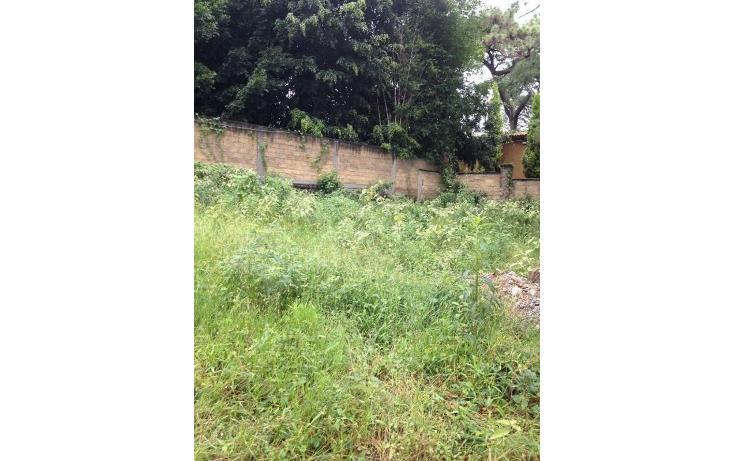 Foto de terreno habitacional en venta en  , tetela del monte, cuernavaca, morelos, 1251579 No. 10
