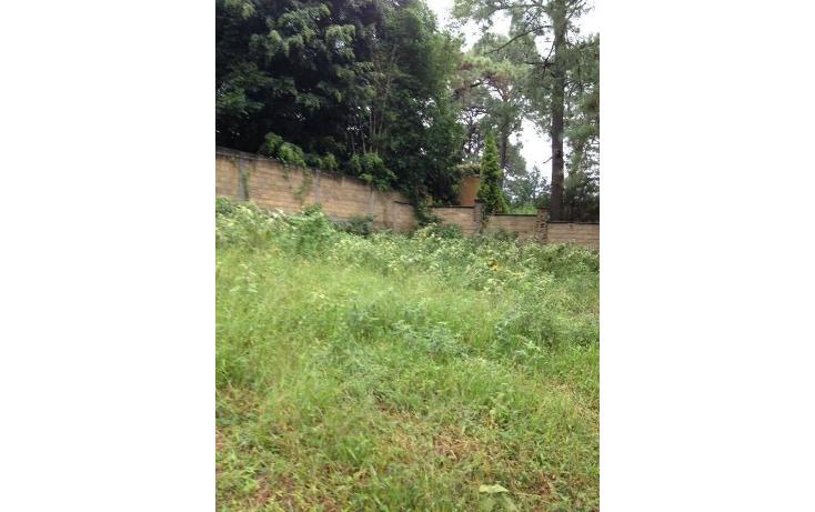 Foto de terreno habitacional en venta en  , tetela del monte, cuernavaca, morelos, 1251579 No. 11