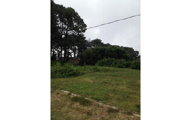 Foto de terreno habitacional en venta en  , tetela del monte, cuernavaca, morelos, 1251579 No. 12