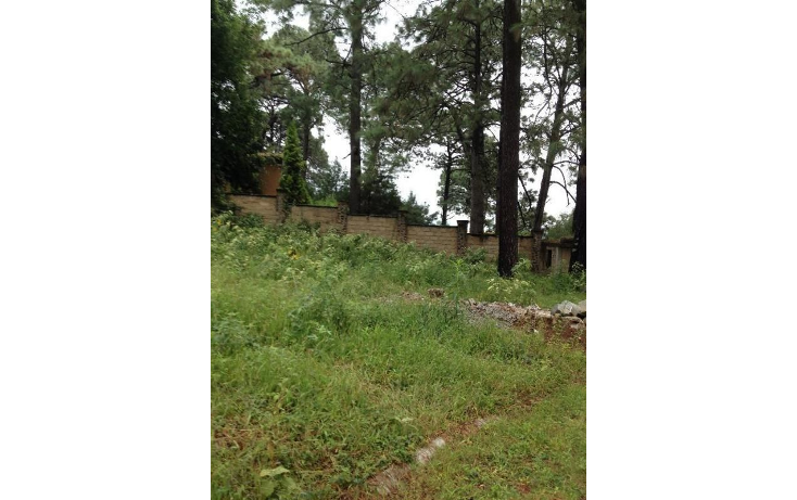 Foto de terreno habitacional en venta en  , tetela del monte, cuernavaca, morelos, 1251579 No. 16
