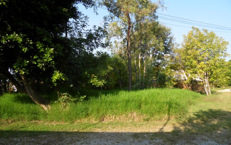 Foto de terreno habitacional en venta en  , tetela del monte, cuernavaca, morelos, 1294717 No. 02