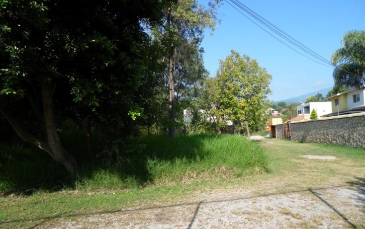 Foto de terreno habitacional en venta en  , tetela del monte, cuernavaca, morelos, 1294717 No. 04