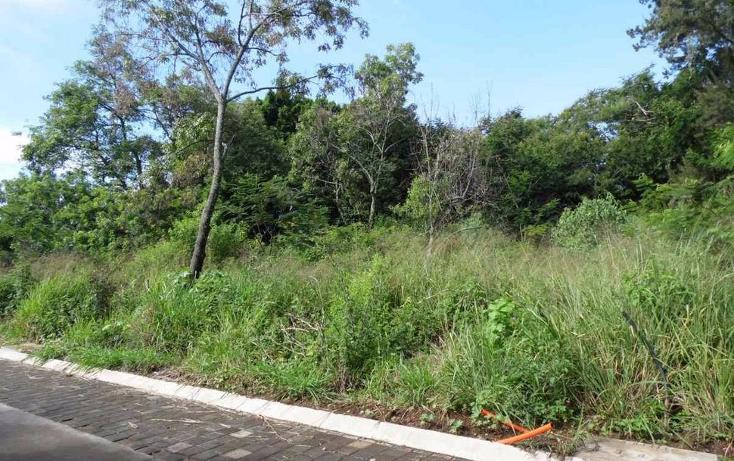 Foto de terreno habitacional en venta en  , tetela del monte, cuernavaca, morelos, 1460661 No. 03