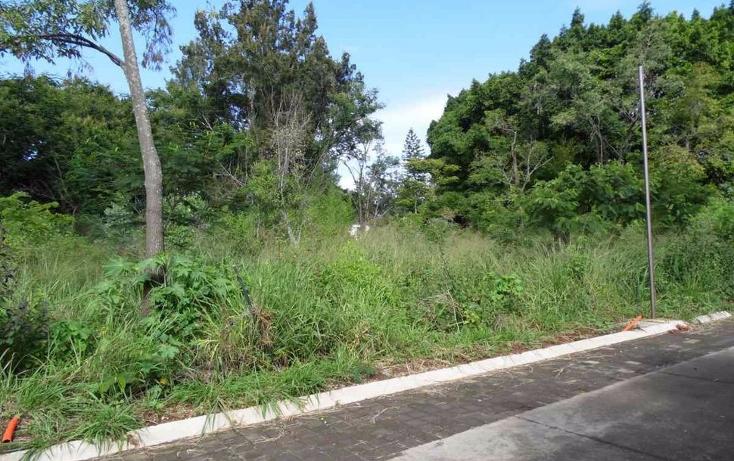 Foto de terreno habitacional en venta en  , tetela del monte, cuernavaca, morelos, 1460661 No. 04