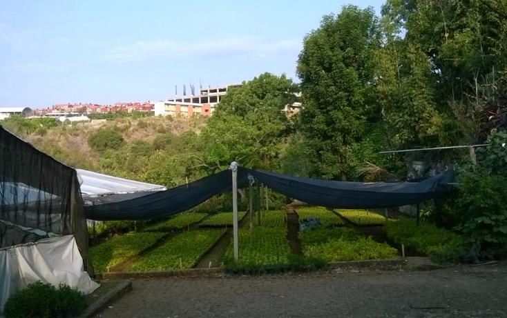 Foto de terreno habitacional en venta en, tetela del monte, cuernavaca, morelos, 1966076 no 01