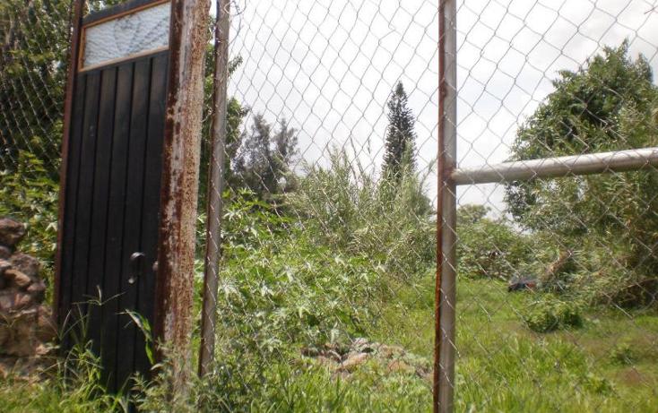 Foto de terreno habitacional en venta en  , tetelcingo, cuautla, morelos, 1238649 No. 05