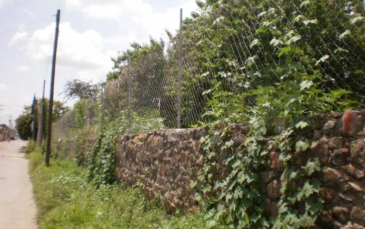 Foto de terreno habitacional en venta en  , tetelcingo, cuautla, morelos, 1238649 No. 06