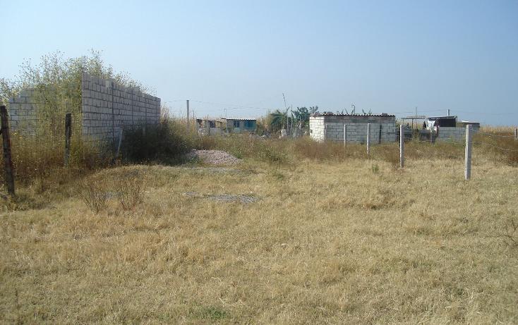 Foto de terreno comercial en venta en  , tetelcingo, cuautla, morelos, 1268519 No. 02