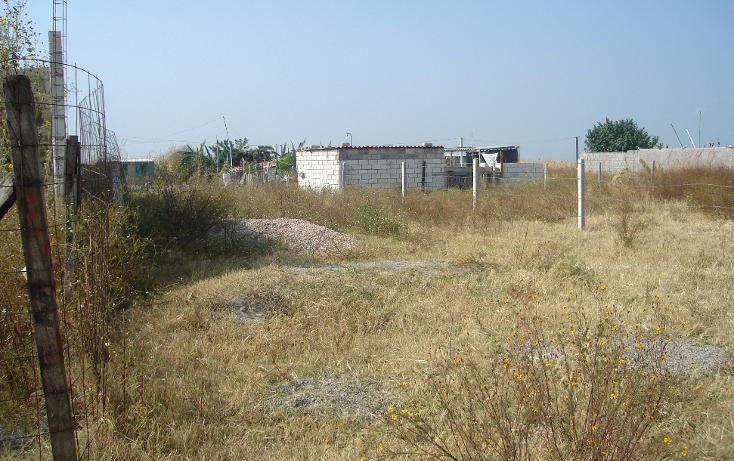 Foto de terreno comercial en venta en  , tetelcingo, cuautla, morelos, 1268519 No. 04