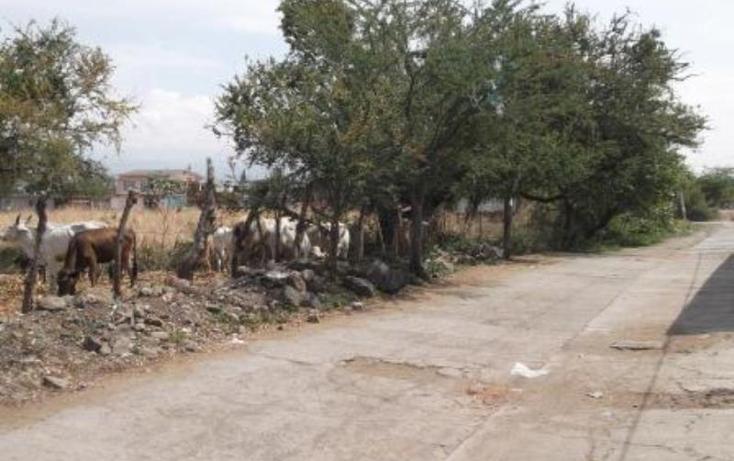 Foto de terreno habitacional en venta en  , tetelcingo, cuautla, morelos, 1574562 No. 06