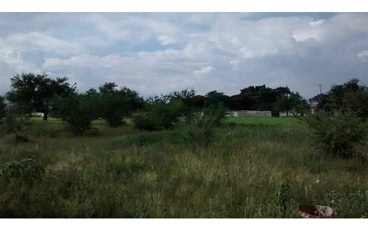 Foto de terreno habitacional en venta en  , tetelcingo, cuautla, morelos, 1676232 No. 03