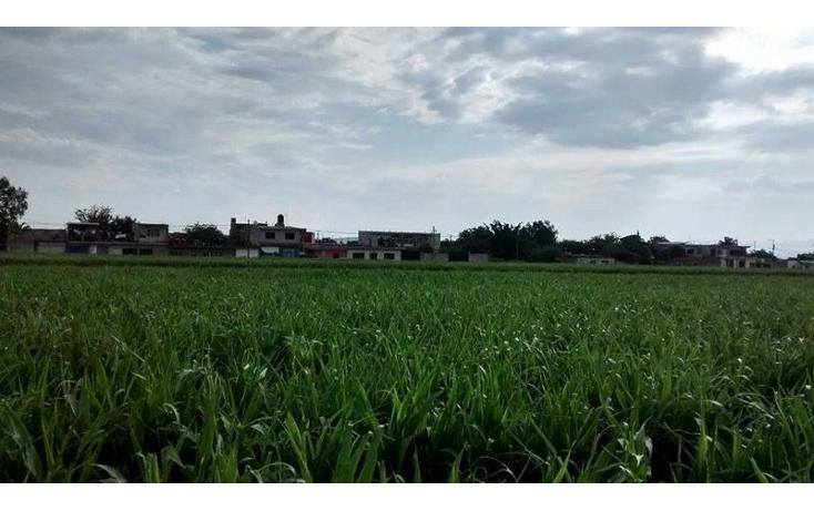 Foto de terreno habitacional en venta en  , tetelcingo, cuautla, morelos, 1676232 No. 04