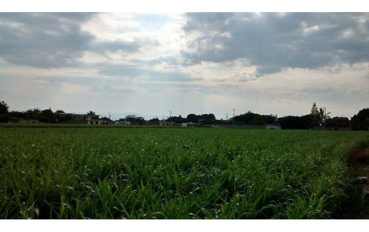 Foto de terreno habitacional en venta en  , tetelcingo, cuautla, morelos, 1676232 No. 06