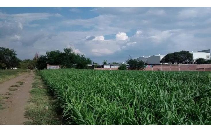 Foto de terreno habitacional en venta en  , tetelcingo, cuautla, morelos, 1676232 No. 10
