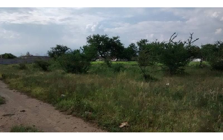 Foto de terreno habitacional en venta en  , tetelcingo, cuautla, morelos, 1676232 No. 11