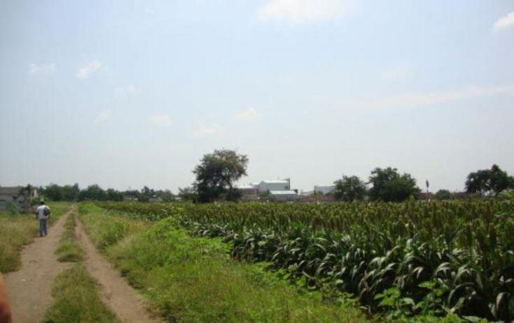 Foto de terreno habitacional en venta en, tetelcingo, cuautla, morelos, 1766888 no 04