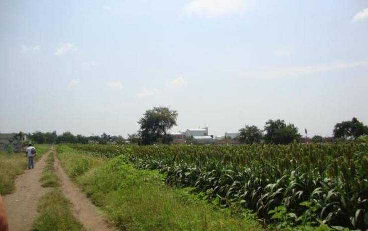 Foto de terreno habitacional en venta en  , tetelcingo, cuautla, morelos, 1766888 No. 04