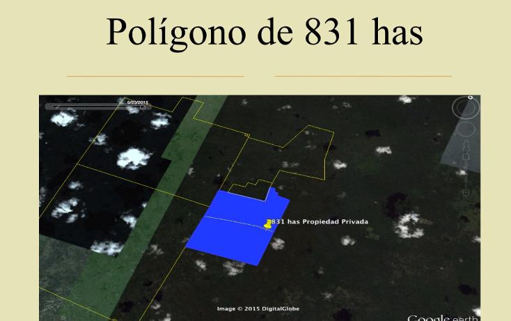 Foto de terreno comercial en venta en  , tetiz, tetiz, yucatán, 1046033 No. 03