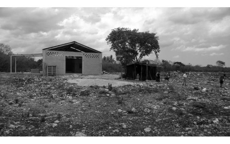 Foto de terreno comercial en venta en  , tetiz, tetiz, yucatán, 1250829 No. 01