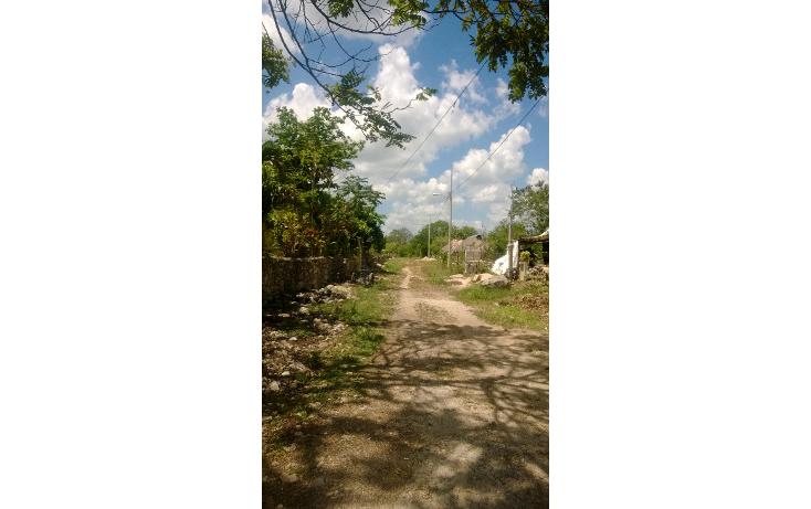 Foto de terreno comercial en venta en  , tetiz, tetiz, yucatán, 1250829 No. 05